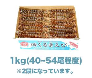 item_ikiebi1kg