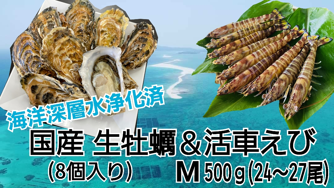 item_kakiebi_set_03