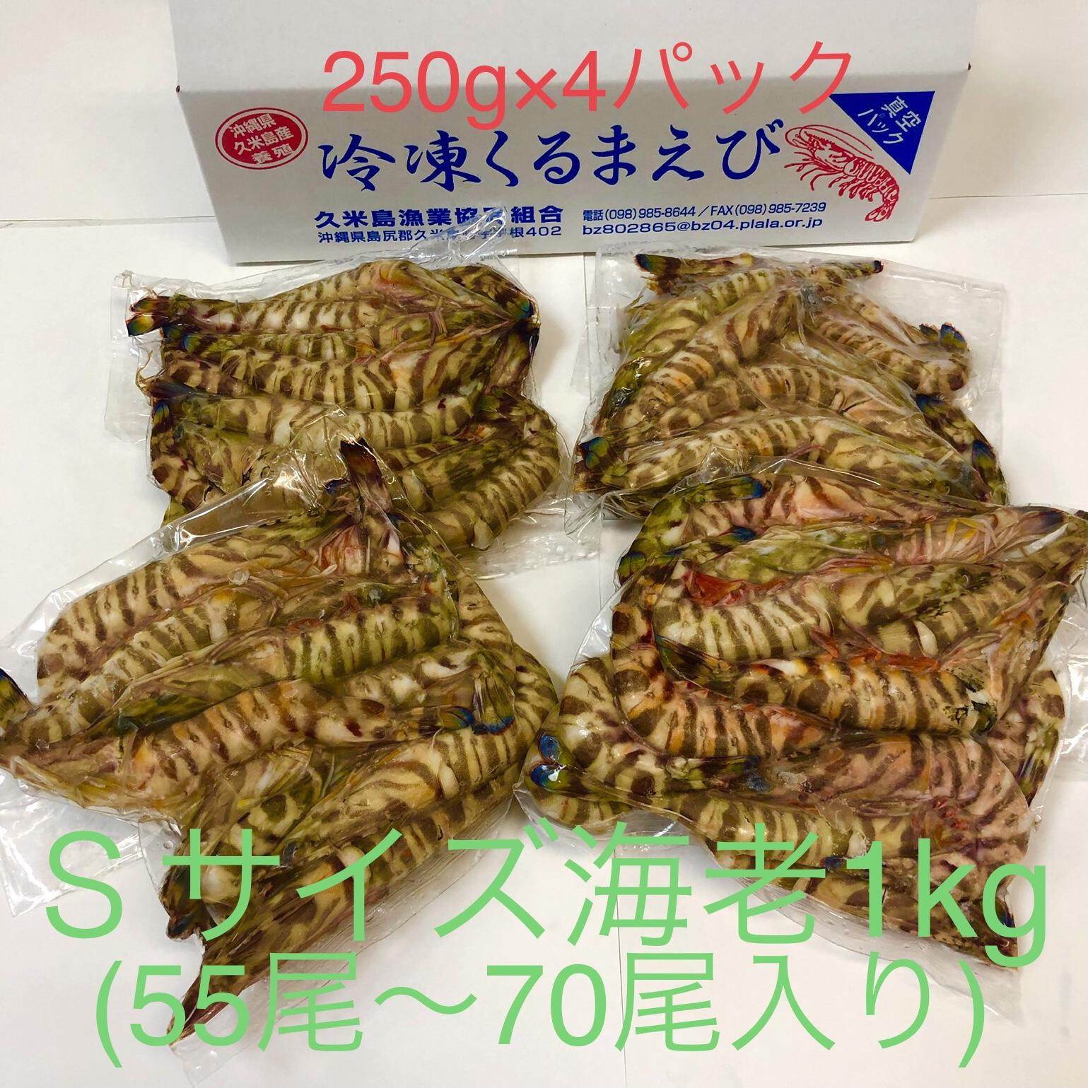 item_reitoukurumaebi_s