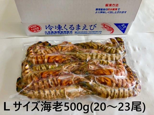 item_reitoukurumaebi_l500