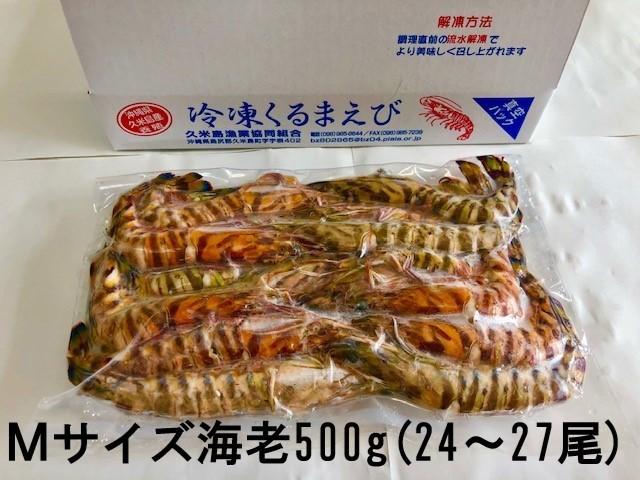 item_reitoukurumaebi_m500